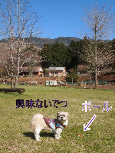・搾シ姫4071597_convert_20120409211157