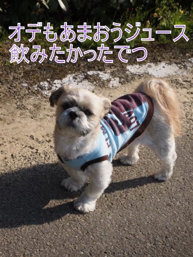 ・搾シ撤3291277_convert_20120409225034