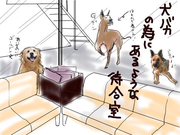 01_20111122011541.jpg