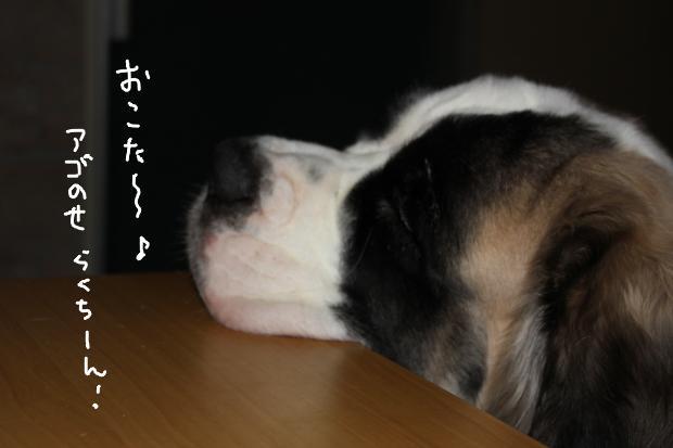 01_20120114010416.jpg