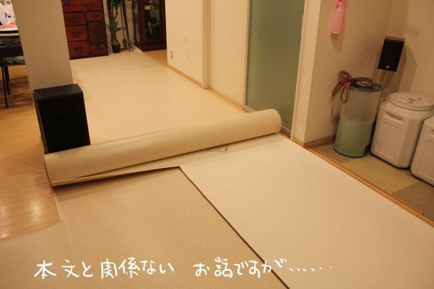 01_20120220120039.jpg