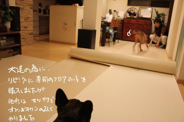 02_20120220120039.jpg
