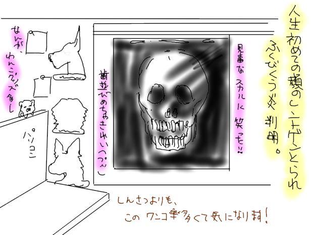 03_20111122011541.jpg