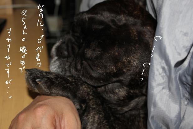 03_20111203232047.jpg