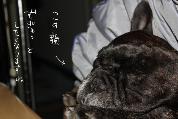 04_20111203232046.jpg
