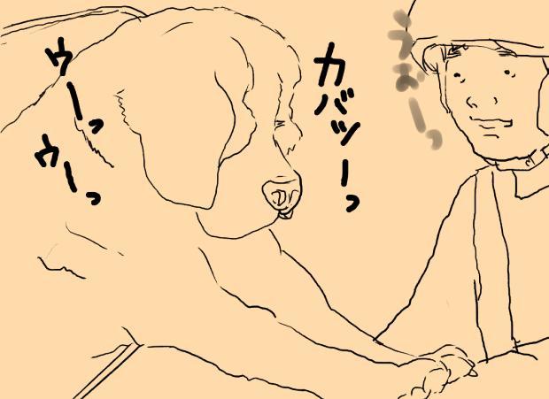05_20120216010317.jpg