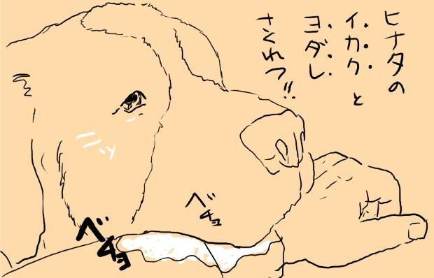 06_20120216010317.jpg
