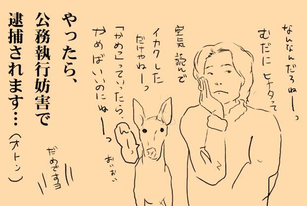 07_20120216010427.jpg