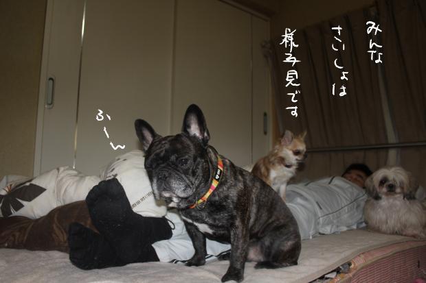 07_20120223121525.jpg