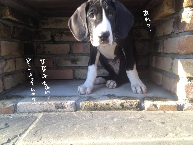 09_20120308023555.jpg