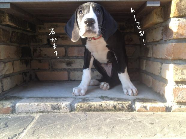 10_20120308023555.jpg