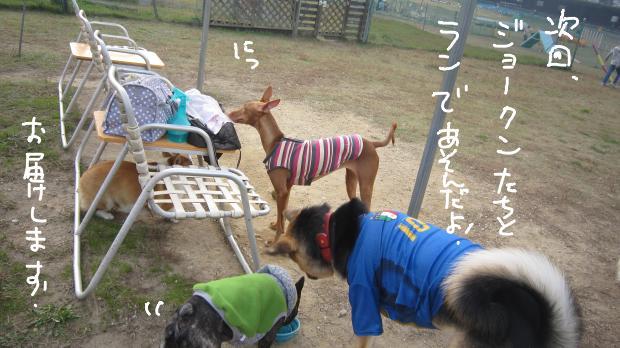 12_20111130033959.jpg