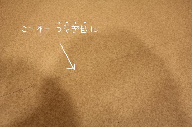 12_20120220120438.jpg