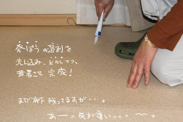 13_20120220120508.jpg