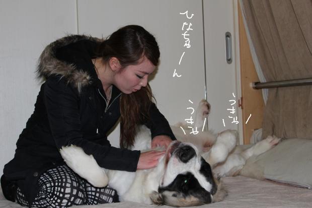 21_20120305000243.jpg