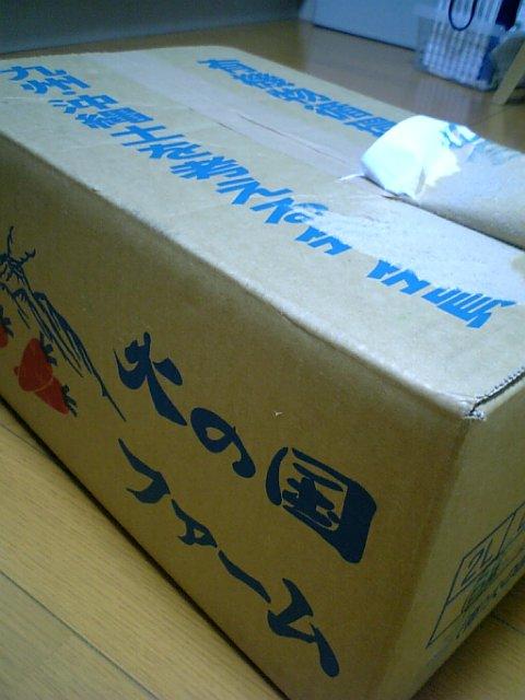 スタイルプラスパワージューサー ニンジンの箱