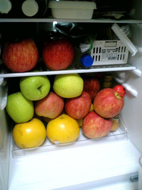 スタイルプラスパワージューサー りんごとグレープフルーツ