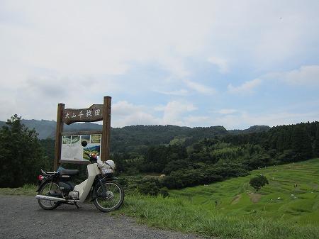 大山千枚田 2