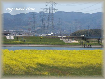 2011-4-8-2.jpg