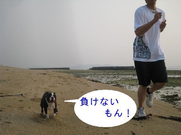 画像 001