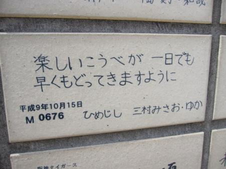 2009_6_26_4.jpg