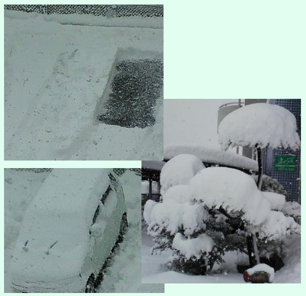 1月24日とある駐車場
