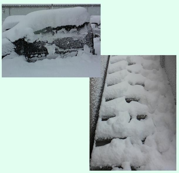 1月24日とある雪状況