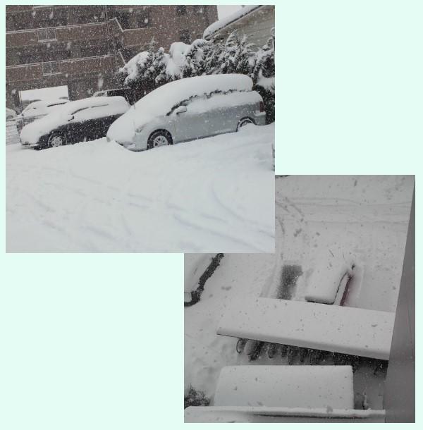 1月26日とある駐車場