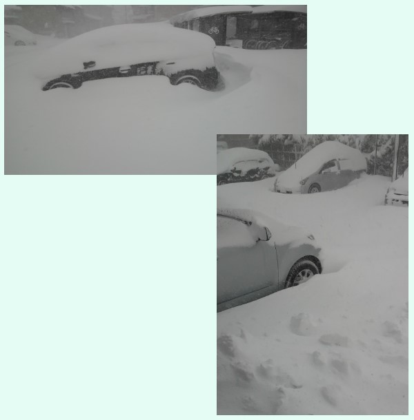 とある駐車場の風景2月2日