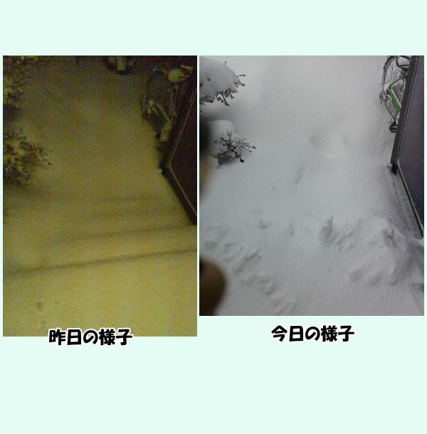 とあるマンションの風景2月1日~2日