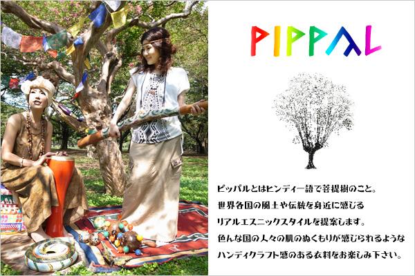 gato_PIPPAL.jpg