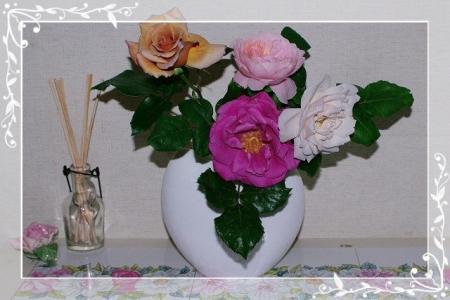 f-rose510 044