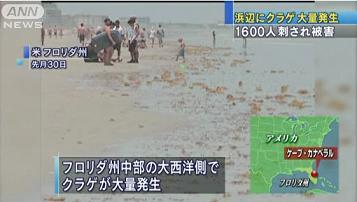 クラゲ被害 0601