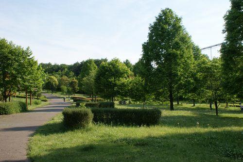 長岡公園2