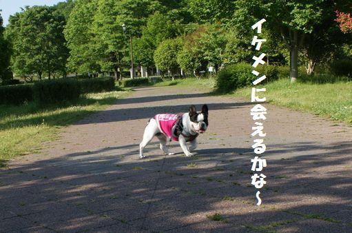 長岡公園.4jpg