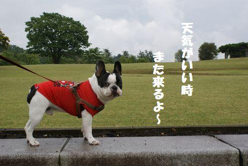 那須野が原公園2