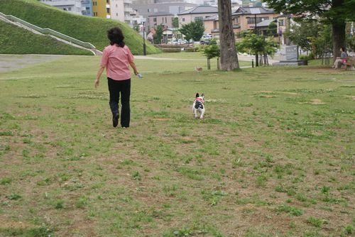 ばぁばと散歩