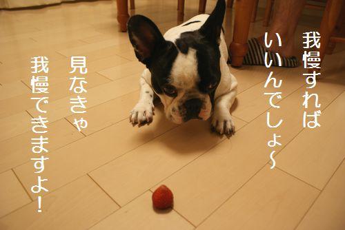 イチゴ大好き2