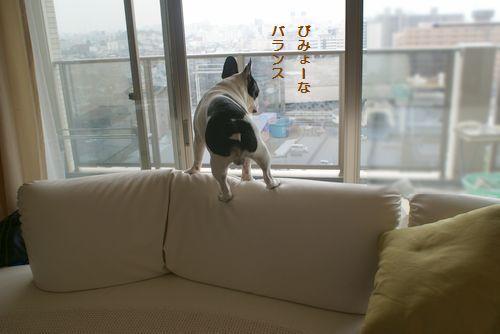 ソファーの上2