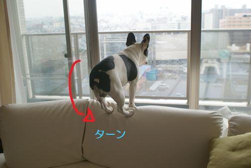 ソファーの上3