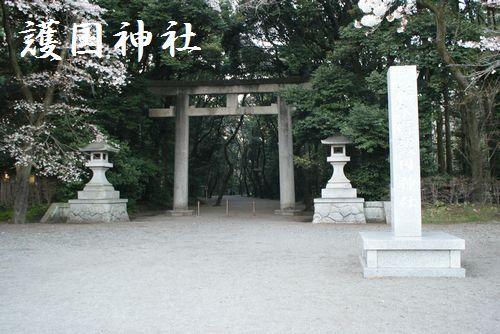 DSC01128-1.jpg