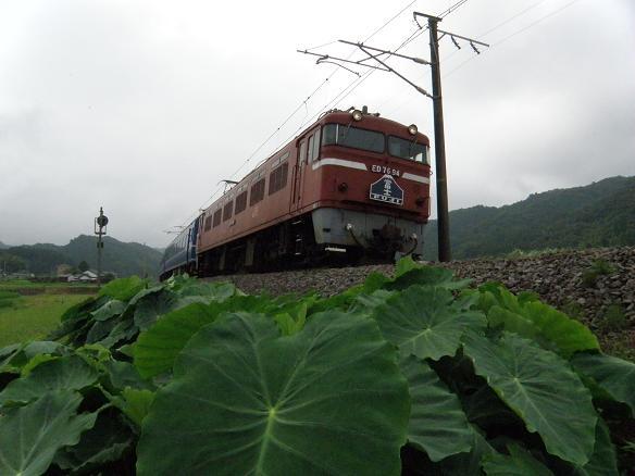 fuji2_20090802104851.jpg