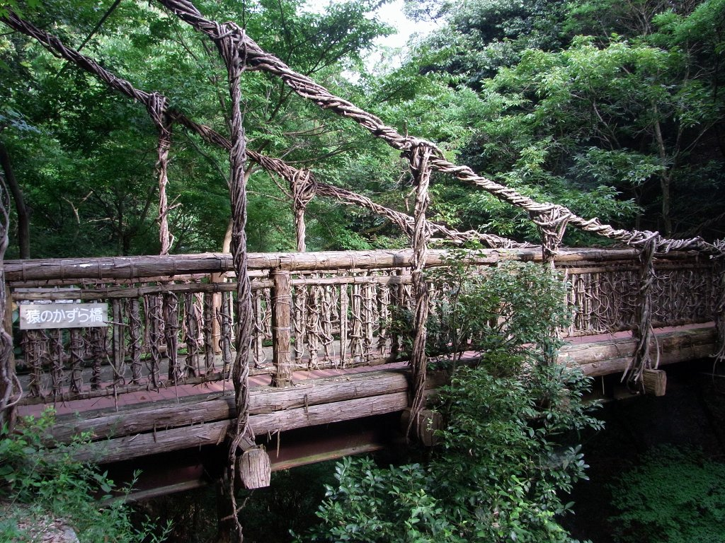猿のかずら橋。
