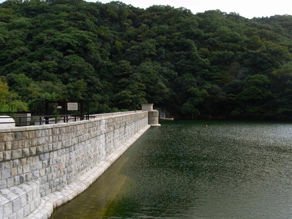 ダムを横から。