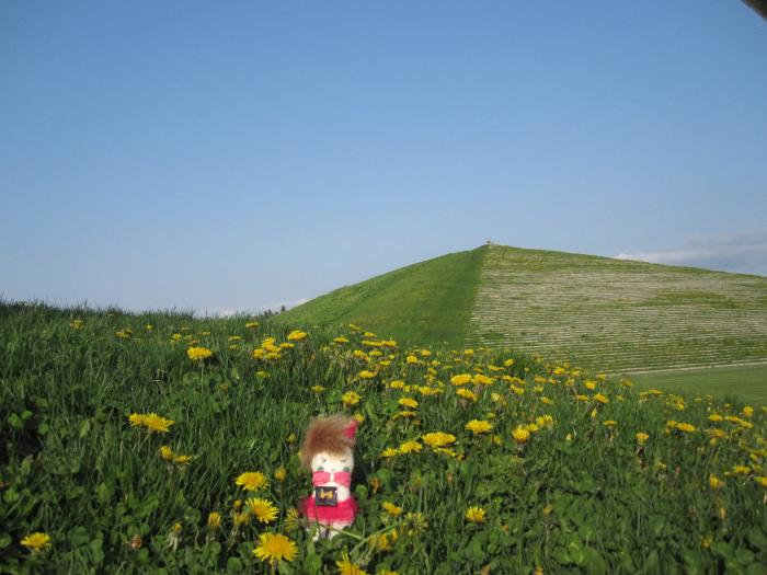 KINO 背景山