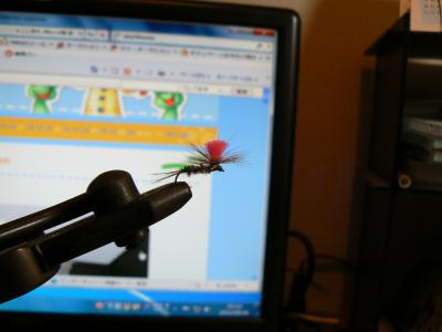P1020749_convert_20110531002611.jpg