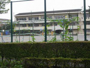 学校‐12