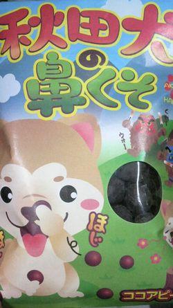 秋田犬の鼻クソ