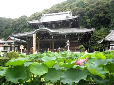 mimurodo_090814_2.jpg