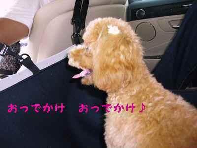 2009年08月13日_CIMG0236